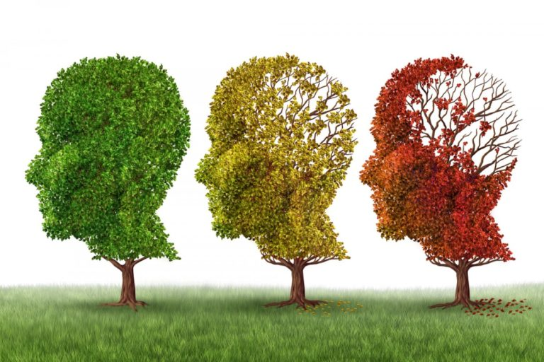 Can CBD Prevent or Treat Alzheimer's?