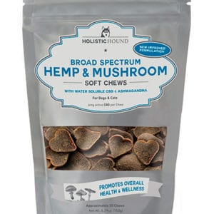 Water Soluble Hemp & Mushroom Pet Treats by Holistic Hound